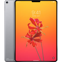 iPad Pro 2018 with Notch